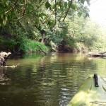 (mini) Spływ kajakowy Jeziorką