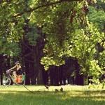 Rowery miejskie Veturilo