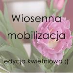 Wyzwanie kwietniowe – wiosennej mobilizacji c.d.