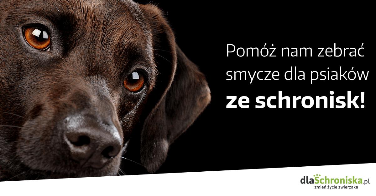 Akcja Smycz dla psiaka - plakat