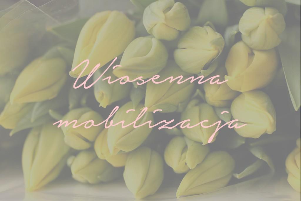 wiosenna_mobilizacja_1