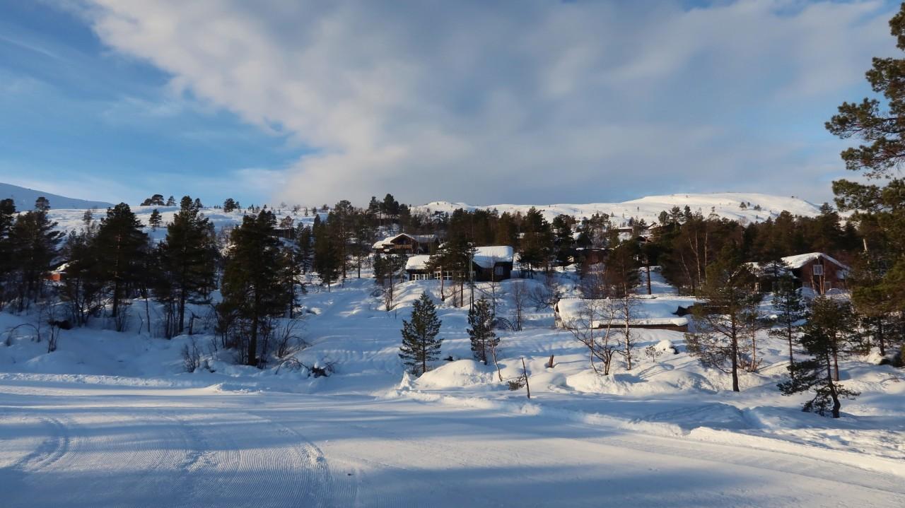 Ciekawostki o Norwegii