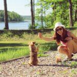 Pomysły na zabawy z psem na spacerze