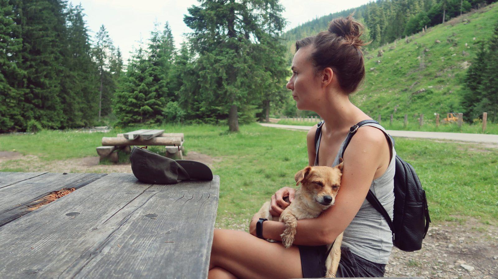 tatry z psem